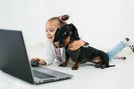 Espacio en internet